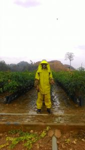gambar jas hujan untuk dinas pertanian murah di bandung